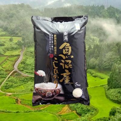 玄米5キロ 魚沼産コシヒカリ 棚田米