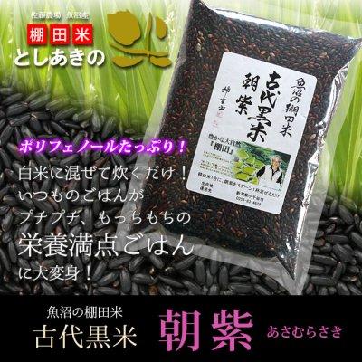 【送料無料】古代米/朝紫/500g