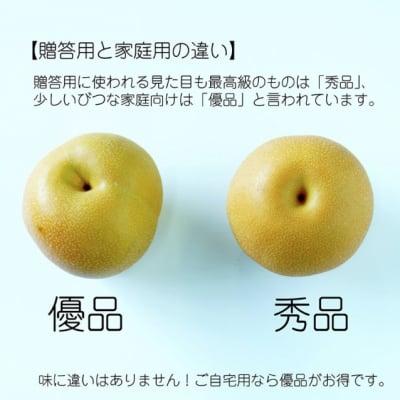 〜ご予約受付8月上旬から発送予定〜幸水梨 加工用・自家消費用B級品(優品)  10kg