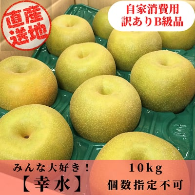 [予約商品]幸水梨/加工/自家消費用/訳ありB級品/優品/10kg
