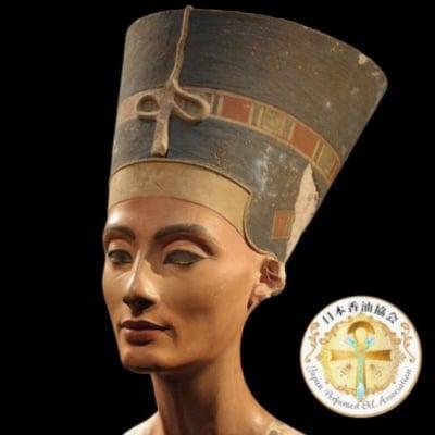 Nefertiti 香油10mlネフェルティティ