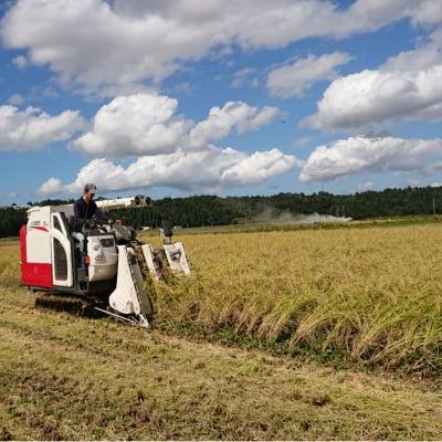 玄米30㎏【魚沼産|自然栽培米コシヒカリ|無農薬|無肥料】