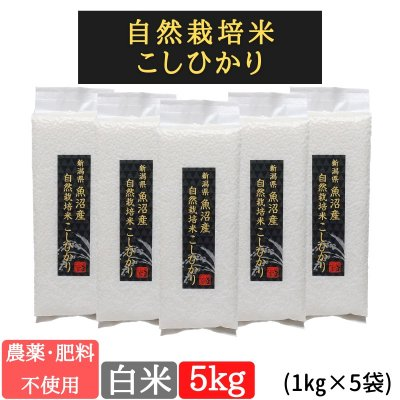 白米5kg【魚沼産|自然栽培米コシヒカリ】【無農薬|無肥料】