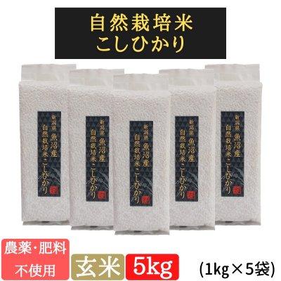 玄米5kg【魚沼産|自然栽培米コシヒカリ】【無農薬|無肥料】