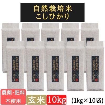 玄米10kg【魚沼産|自然栽培米コシヒカリ】【無農薬|無肥料】