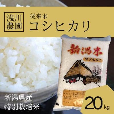 令和元年産コシヒカリ20kg【特別栽培米】【従来米】