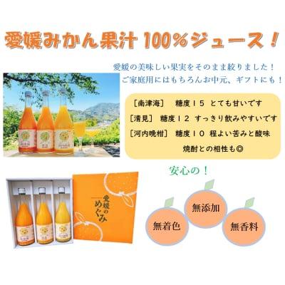 【愛媛県産】果汁100%みかんジュース3本 媛果マルシェオリジナル!の画像2