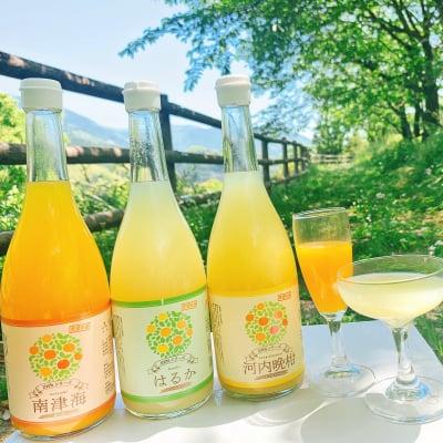 【愛媛県産】果汁100%みかんジュース3本 媛果マルシェオリジナル!