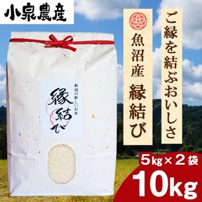 ☆新米☆縁結び|白米【10kg】(5kg×2)
