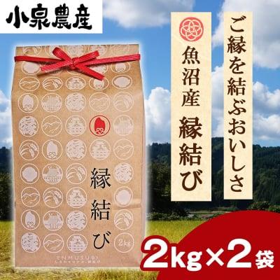 ☆新米☆縁結び|白米【2kg】×2