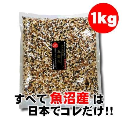 【飲食店様】1kg魚沼の農家さんだけで集めた五穀米