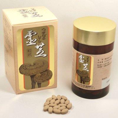 ウチダの霊芝(レイシ)エキス粒状 100g(標準:300粒) ウチダ和漢薬