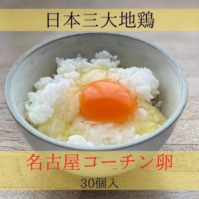 純系 名古屋コーチン卵 30個入り