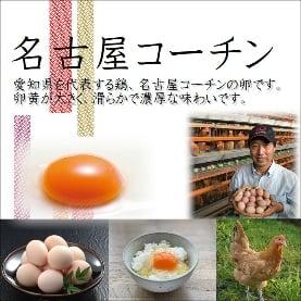名古屋コーチン卵とたまり醤油のセット