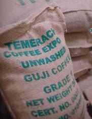 エチオピアコーヒー 生豆5kg  グジ ナチュラルG1