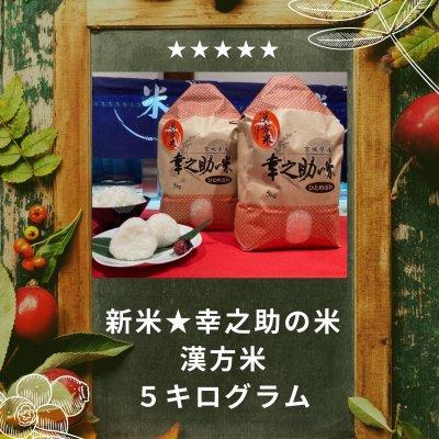 ⭐新米令和3年度米⭐漢方米幸之助の米 ひとめぼれ(白米or玄米)5kg