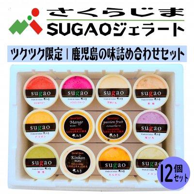 さくらじまSUGAOジェラート|鹿児島の味詰合せ12個セット