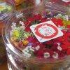 【当園人気ナンバー1】エディブルフラワー「美食花」