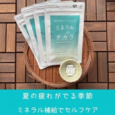 ミネラルのチカラ(30粒×1袋)