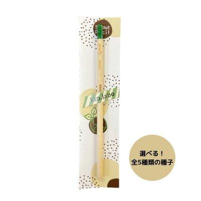 芽が出る鉛筆 【単品】