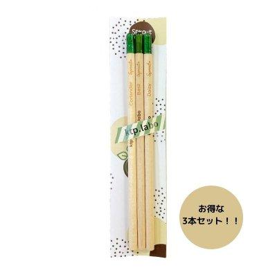 芽が出る鉛筆 【お得な3本セット】