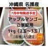【7月中旬発送予定】【ご家庭用1㎏】沖縄産完熟アップルマンゴー 2〜3玉 〜有機栽培〜